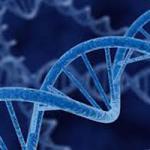 geneticsreport