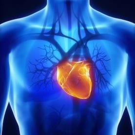 3D printers printed HEART