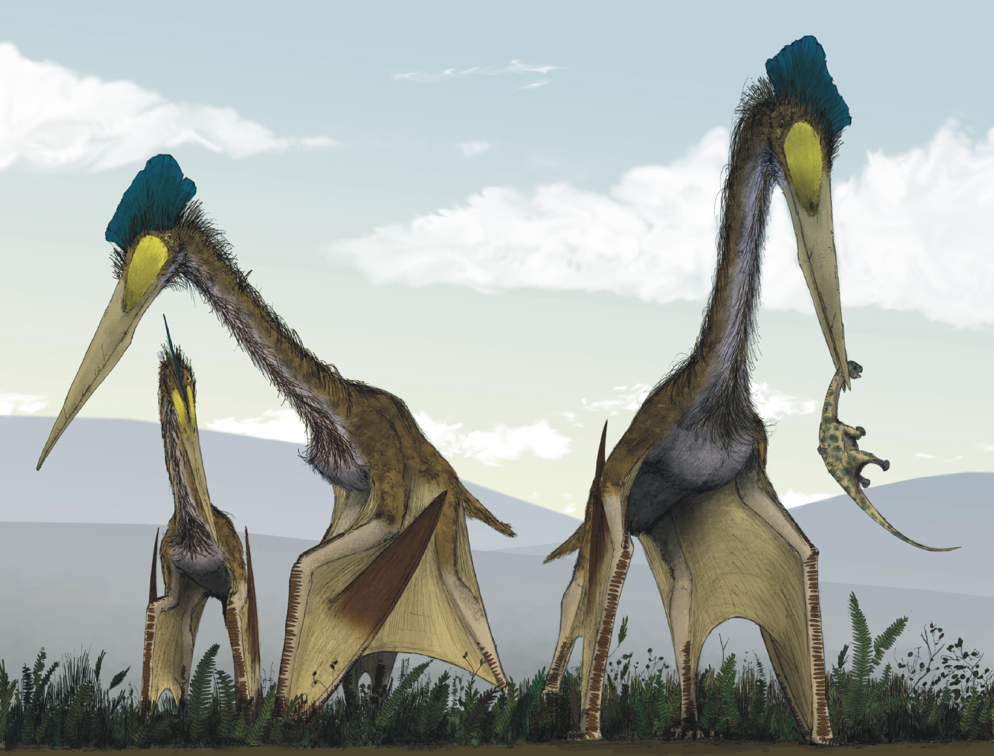 Intact pterosaur eggs reported found with parents