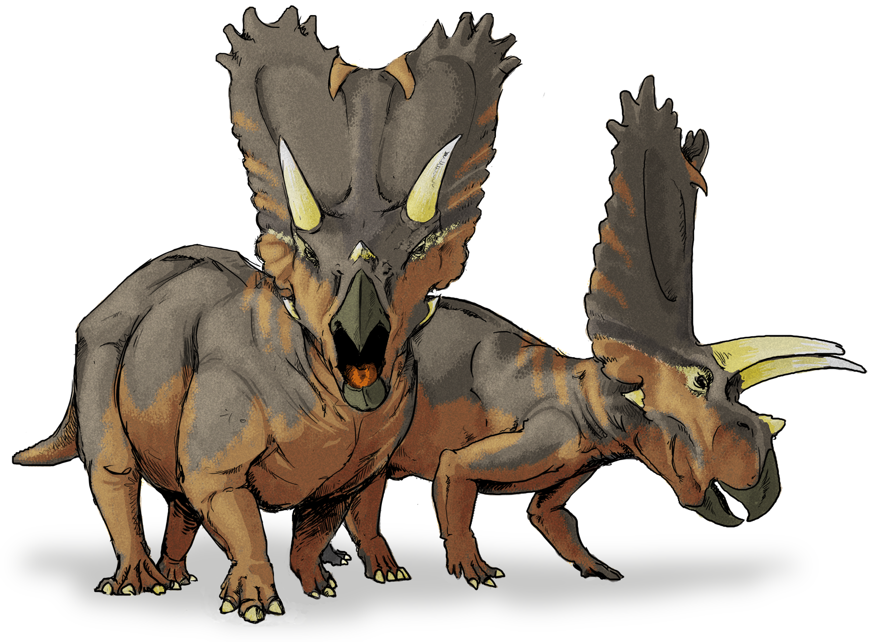 New dinosaurs species with