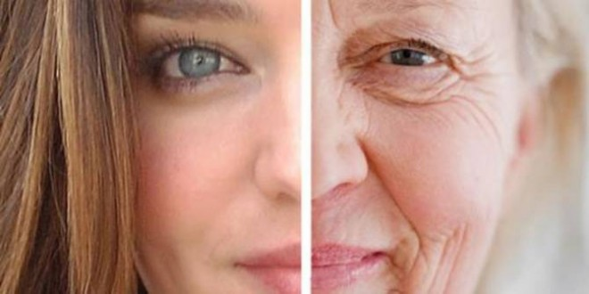 New-found gene could play role in aging from birth