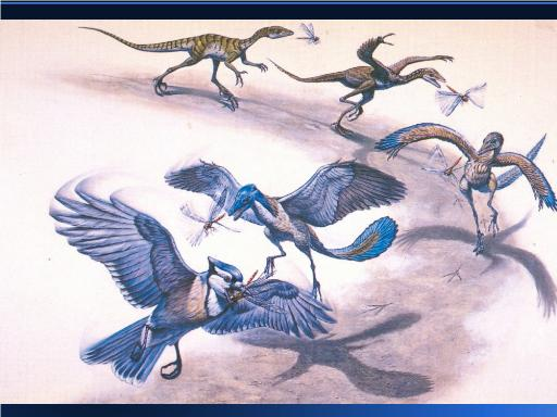 Dinosaurs evolved into flying birds, scientists say