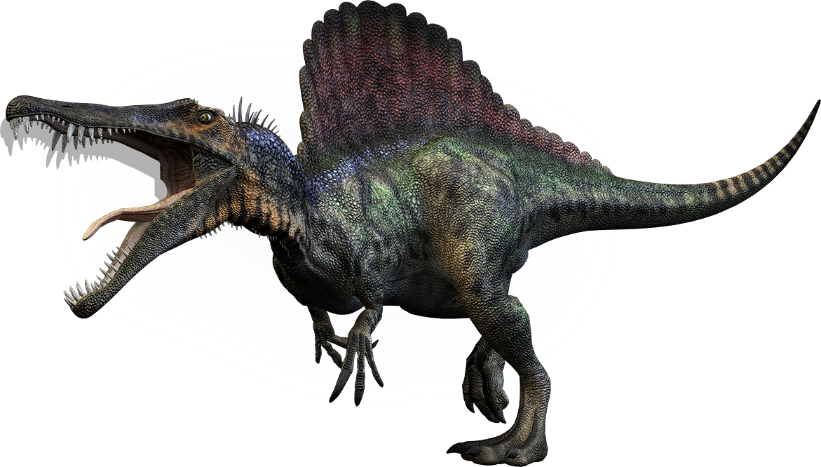 Scientists report first semiaquatic dinosaur, Spinosaurus: Massive predator was more than 9 feet longer than largest T. rex