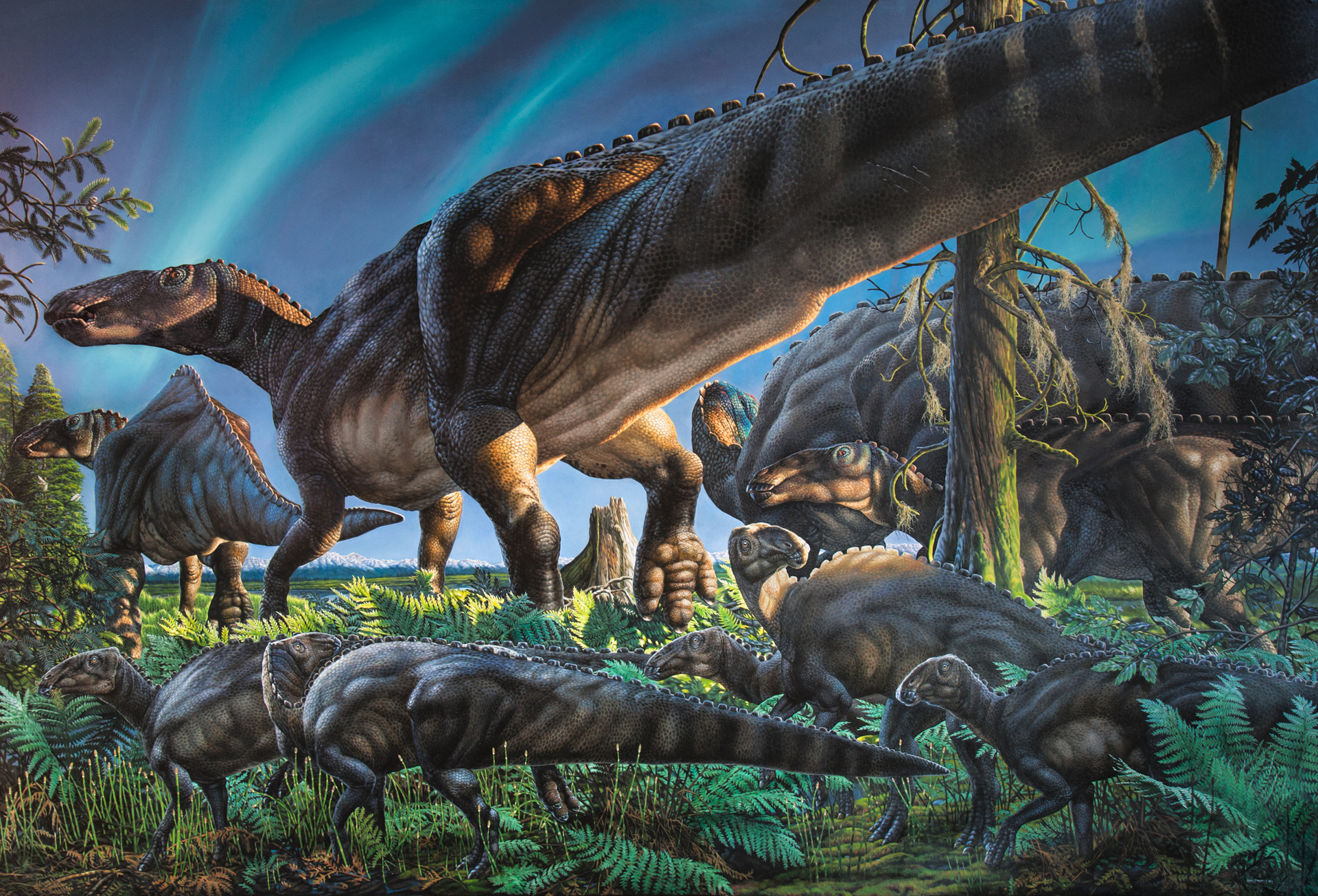 New dinosaur species discovered on Alaska's North Slope