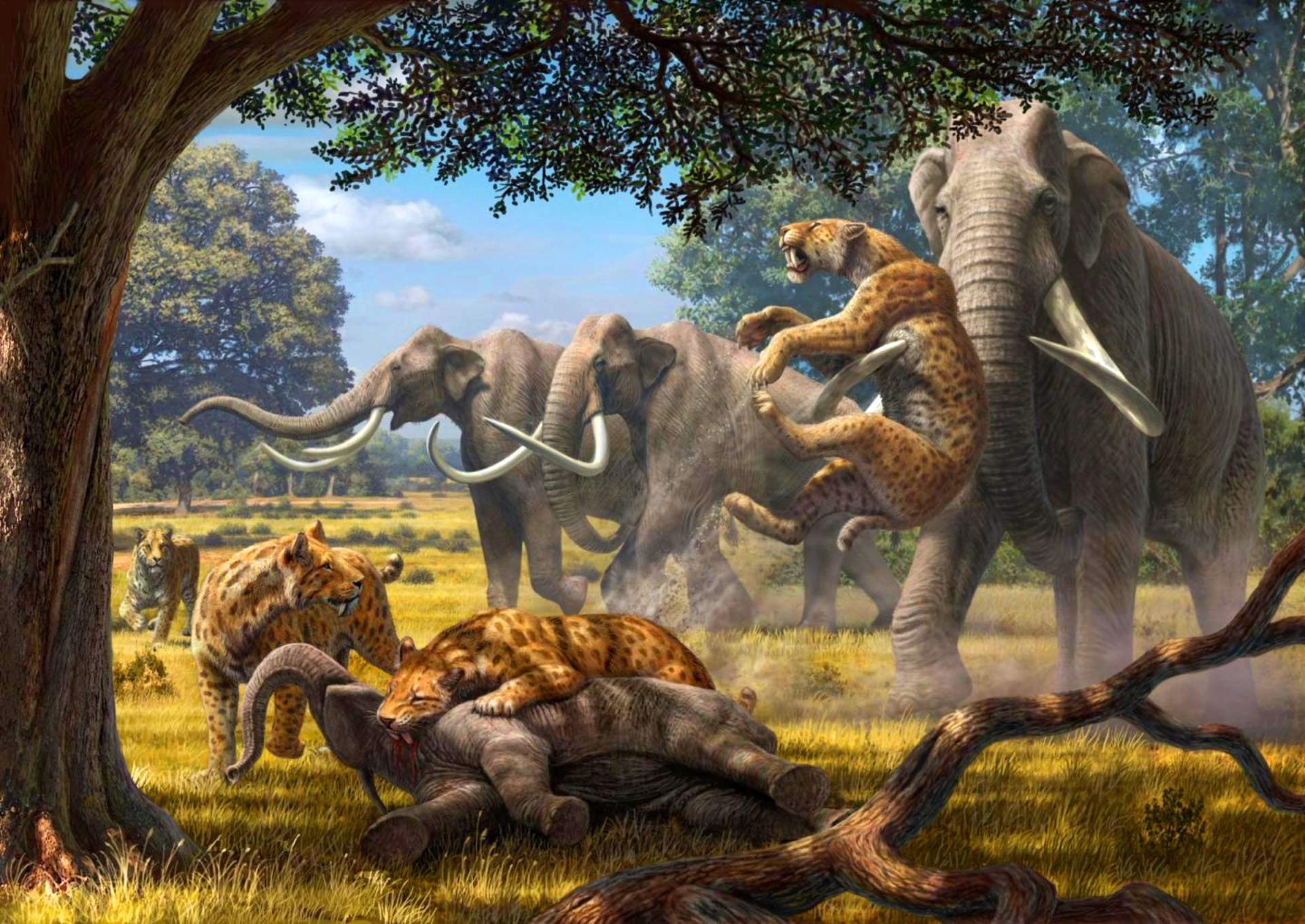 Think lions are scary today? You have no idea about the Pleistocene epoch