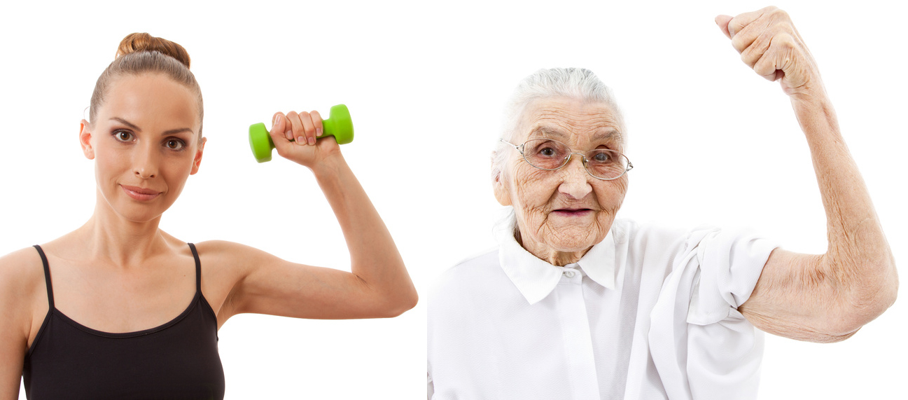 Study find promising results in treating age-related decline in muscle mass and power