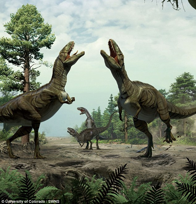 Dinosaur love nests unearthed by Colorado research group